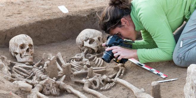 devenir archéologue